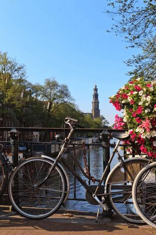 Tulip Tours premium 5 days | Boat Bike Tours Holland