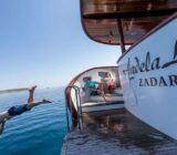 Andela Lora swim platform dive