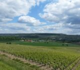 France Champagne vineyards