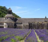 France Provence Camargue Avignon abbaye de Senanque