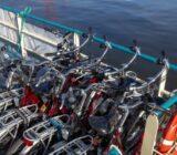 Flora bikes on deck