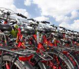 Sarah deck bikes