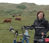 Cyclist in Northern Holland dunes