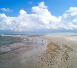 Terschelling beach