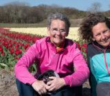 Sitting beside tulip field