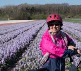 Cyclist tulip field