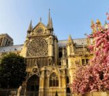 France Champagne Paris Notre Dame
