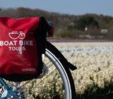 Bike bag by tulip field