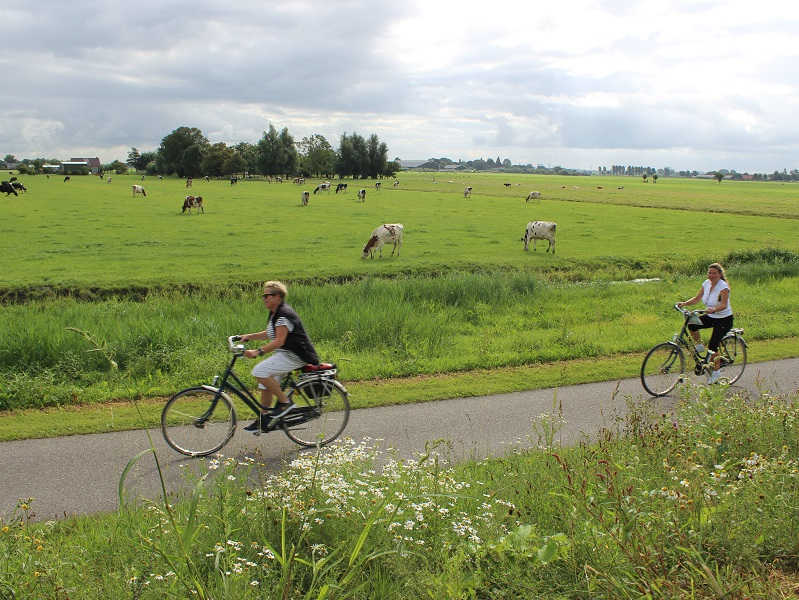 Cyclists in the country side