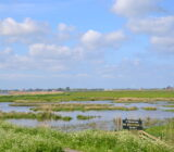 Waddenzee and Friesland staff Sandra nature reserve it fryske gea