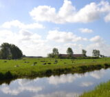 Waddenzee and Friesland staff Sandra polder landscape